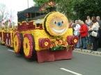 b3f7a-tulip-train-scaled1000